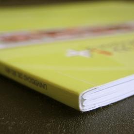 6ad74-libro_solapas3