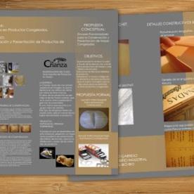 Láminas Expositivas / Diseño y Diagramación